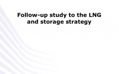 Follow up to the LNG and Storage Strategy, EU