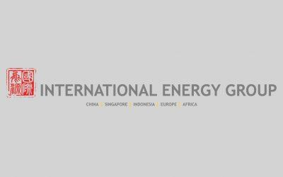 Independent Distribution Network Operator Regulatory Intervention