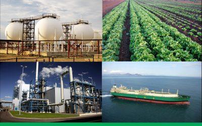 Nigerian National Gas Policy